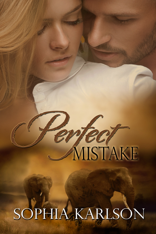 Book Cover: Perfect Mistake